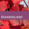 Weinsorte: Bardolino