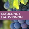 Weinsorte: Cabernet Sauvignon