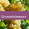 Weinsorte: Chardonnay
