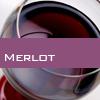 Weinsorte: Merlot