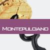 Weinsorte: Montepulciano