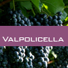 Weinsorte: Valpolicella