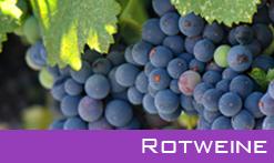 Italienische Rotweine - Kategorie